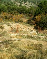 Византийский монастырь Св. Пантелеймона. Гора Перчем