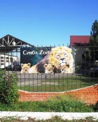 Небольшой зоопарк в Запорожье
