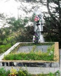 Братская могила с. Вишняки
