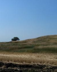 Курган Могила Гологанка біля Запоріжжя