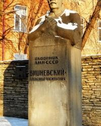 Памятник хирургу А. Вишневскому в Казани
