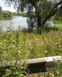 Отрадное Запорожского района. Тайник