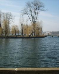Тернопільський ставок