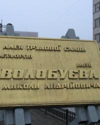 Аллея им. Н.А. Волобуева, г.Днепродзержинск