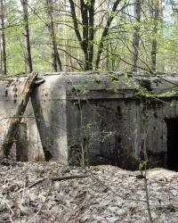 ДОТ 561. Вузол оборони Гута-Межигірська КУР
