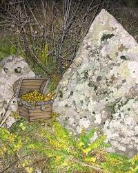 Токовский водопад на р.Каменка. Ларец