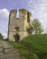 Черленковский замок Щенёвского