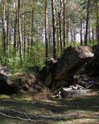 Сильноразрушенный ДОТ возле с. Чижовка