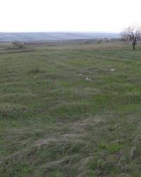 Кладбище венгерских военнопленных в г.Снежное (пос. ш. 18, бывш. г. Новый Донбасс)