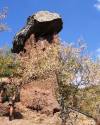 Кам'яні Гриби Сотери