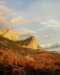 Шаан-Кая – Соколина скеля